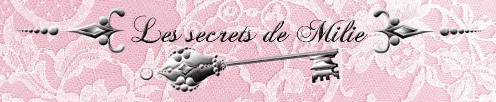 Les secrets de Milie, une nouvelle vie pour vos anciens vêtements